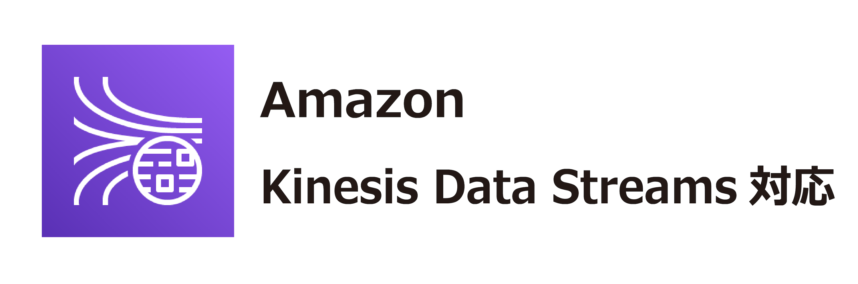 Amazon Kinesis Data Streams対応